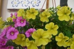 Urlaub auf dem Bauernhof 3 Blumen