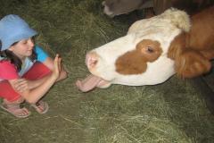 children and animalscalf