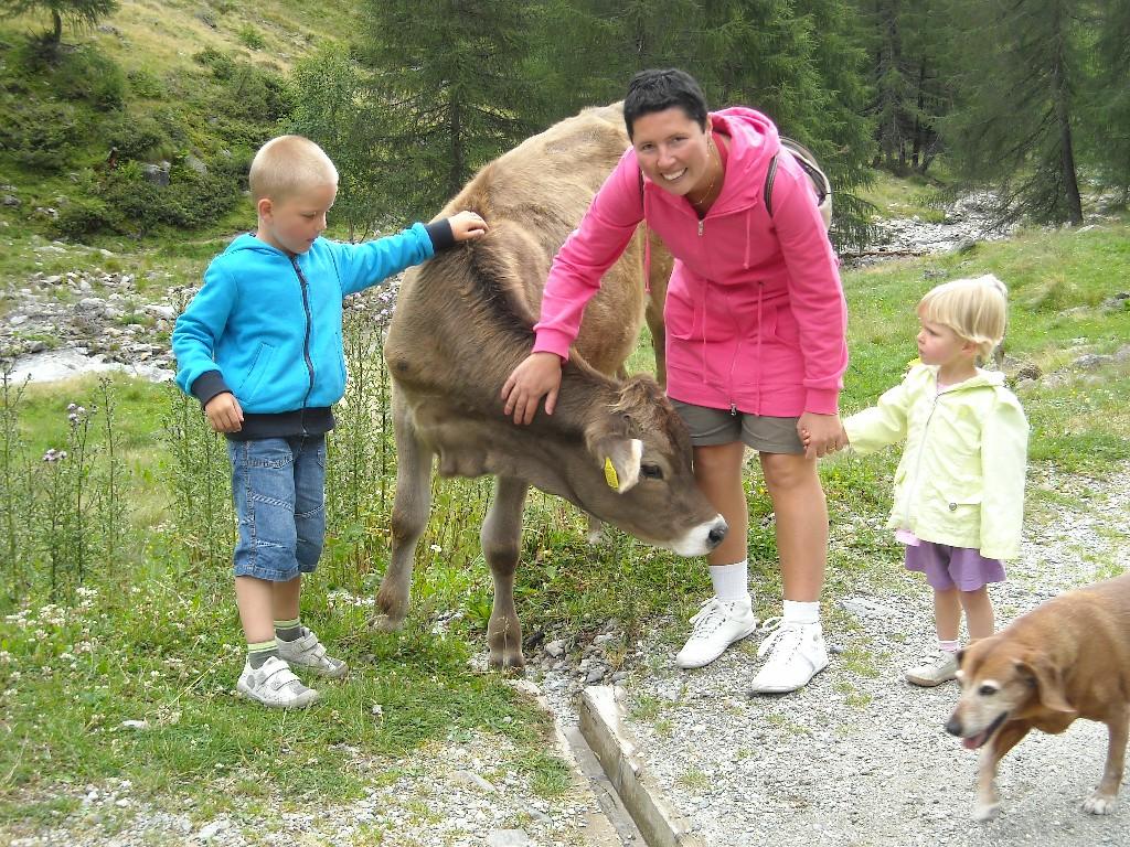 Terento - on the way to mountain pasture Astnerberg
